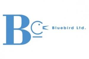 BLUEBIRD CREATIVE SERVICES